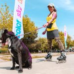 Exercising your pets? It depends…